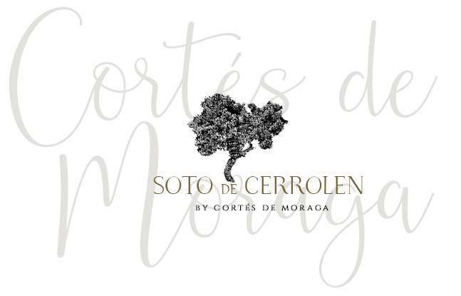 Soto de Cerrolen by Cortés de Moraga